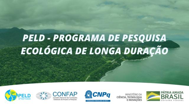 Confap, CNPq e MCTI lançam Chamada do Programa de Pesquisa Ecológica de Longa Duração