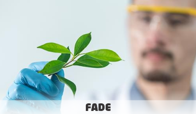 Pesquisador em Ciências da Terra e Meio Ambiente – Analista Ambiental | Cadastro Reserva | Edital 095/2021 | Fade